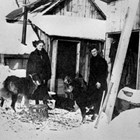 Lucille Martin, a friend and dogs, Susitna Station, Alaska, 1916.