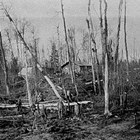 Clearing land on the Sperstad homestead, 1926.
