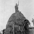 Haying, ca. 1940.  Anna Sperstad is atop the pile.