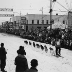 A view down 4th Avenue during the start of one of the dog races during Fur Rendezvous, ca. 1956, when Anchorage received an award as an All-America City and put up the banner that can be seen in this photograph.  On the right or southern side of 4th Avenue, a sign for Kennedy Hardware can be seen, although the Kennedy family no longer was associated with the store.
