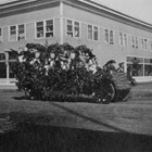 "An ornately decorated 1919 Labor Day parade float passes by the Lathrop Building in downtown Anchorage.  The first floor of the building was built in 1915; the second floor was added in 1916-1917.  The first floor was designed to hold five businesses; the second floor included apartments and professional offices.   From time to time Austin E. ""Cap"" Lathrop lived in one of the apartments."